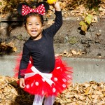Minnie Mouse costume tutu