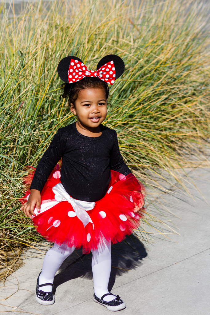 Toadstool Tutu Minnie Mouse costume